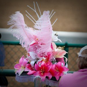 Stargazer Lily Kentucky Derby Hats